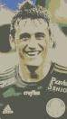 Robinho Palmeiras TL27xx